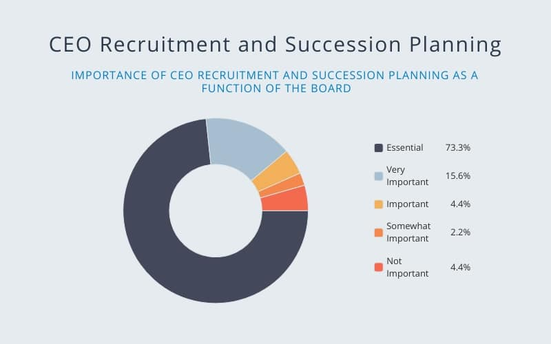 CEO Recruitment and Succession Planning
